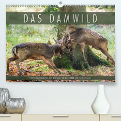 Emotionale Momente: Das Damwild. (Premium, hochwertiger DIN A2 Wandkalender 2021, Kunstdruck in Hochglanz) von Gerlach,  Ingo