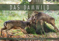 Emotionale Momente: Das Damwild. (Wandkalender 2019 DIN A4 quer) von Gerlach,  Ingo