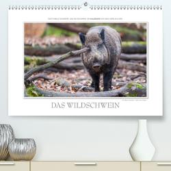 Emotionale Momente: Das Wildschwein. / CH-Version (Premium, hochwertiger DIN A2 Wandkalender 2021, Kunstdruck in Hochglanz) von Gerlach GDT,  Ingo