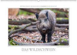 Emotionale Momente: Das Wildschwein. / CH-Version (Wandkalender 2019 DIN A2 quer) von Gerlach GDT,  Ingo