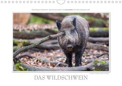 Emotionale Momente: Das Wildschwein. (Wandkalender 2021 DIN A4 quer) von Gerlach GDT,  Ingo
