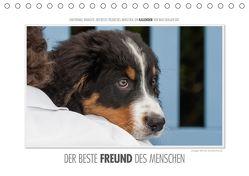 Emotionale Momente: Der beste Freund des Menschen. (Tischkalender 2018 DIN A5 quer) von Gerlach,  Ingo