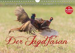 Emotionale Momente: Der Jagdfasan. (Wandkalender 2019 DIN A4 quer) von Gerlach,  Ingo