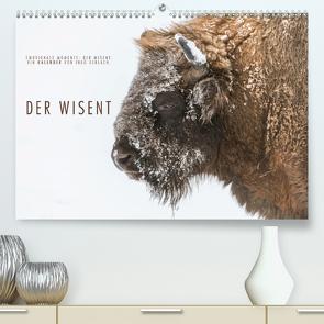 Emotionale Momente: Der Wisent. (Premium, hochwertiger DIN A2 Wandkalender 2021, Kunstdruck in Hochglanz) von Gerlach,  Ingo