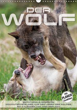 Emotionale Momente: Der Wolf. (Wandkalender 2019 DIN A3 hoch)