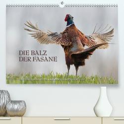 Emotionale Momente: Die Balz der Fasane / CH-Version (Premium, hochwertiger DIN A2 Wandkalender 2020, Kunstdruck in Hochglanz) von Gerlach GDT,  Ingo