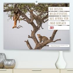 Emotionale Momente: Die besten Wildlifefotos aus Afrika. (Premium, hochwertiger DIN A2 Wandkalender 2021, Kunstdruck in Hochglanz) von Gerlach,  Ingo