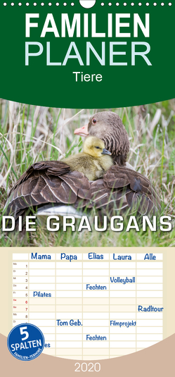 Emotionale Momente: Die Graugans. – Familienplaner hoch (Wandkalender 2020 , 21 cm x 45 cm, hoch) von Gerlach,  Ingo
