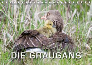 Emotionale Momente: Die Graugans. (Tischkalender 2018 DIN A5 quer) von Gerlach,  Ingo