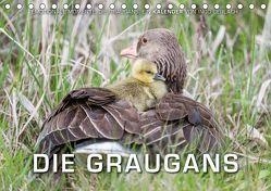 Emotionale Momente: Die Graugans. (Tischkalender 2019 DIN A5 quer) von Gerlach,  Ingo