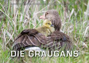 Emotionale Momente: Die Graugans. (Wandkalender 2018 DIN A2 quer) von Gerlach,  Ingo