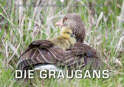 Emotionale Momente: Die Graugans. (Wandkalender 2020 DIN A2 quer) von Gerlach,  Ingo
