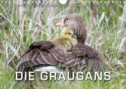 Emotionale Momente: Die Graugans. (Wandkalender 2020 DIN A4 quer) von Gerlach,  Ingo