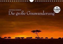 Emotionale Momente: Die große Gnuwanderung (Wandkalender 2019 DIN A4 quer) von Gerlach GDT,  Ingo