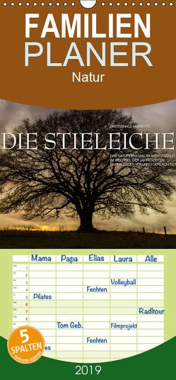 Emotionale Momente: Die Stieleiche – Familienplaner hoch (Wandkalender 2019 , 21 cm x 45 cm, hoch) von Gerlach GDT,  Ingo