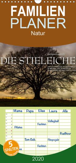 Emotionale Momente: Die Stieleiche – Familienplaner hoch (Wandkalender 2020 , 21 cm x 45 cm, hoch) von Gerlach GDT,  Ingo