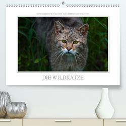 Emotionale Momente: Die Wildkatze. / CH-Version (Premium, hochwertiger DIN A2 Wandkalender 2021, Kunstdruck in Hochglanz) von Gerlach GDT,  Ingo