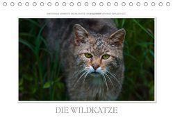 Emotionale Momente: Die Wildkatze. / CH-Version (Tischkalender 2019 DIN A5 quer) von Gerlach GDT,  Ingo