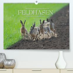 Emotionale Momente: Feldhasen / CH-Version (Premium, hochwertiger DIN A2 Wandkalender 2021, Kunstdruck in Hochglanz) von Gerlach GDT,  Ingo