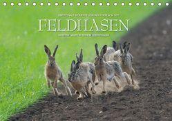 Emotionale Momente: Feldhasen / CH-Version (Tischkalender 2019 DIN A5 quer)
