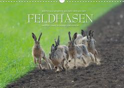 Emotionale Momente: Feldhasen (Wandkalender 2020 DIN A3 quer) von Gerlach GDT,  Ingo