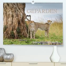 Emotionale Momente: Geparden / CH-Version (Premium, hochwertiger DIN A2 Wandkalender 2021, Kunstdruck in Hochglanz) von Gerlach GDT,  Ingo