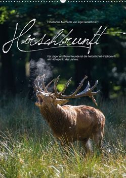 Emotionale Momente: Hirschbrunft (Wandkalender 2019 DIN A2 hoch) von Gerlach GDT,  Ingo