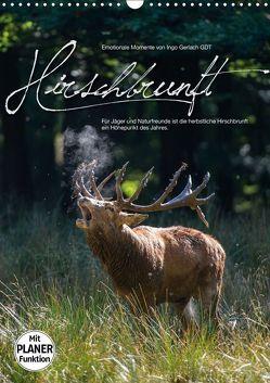 Emotionale Momente: Hirschbrunft (Wandkalender 2019 DIN A3 hoch) von Gerlach GDT,  Ingo