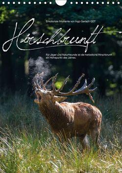 Emotionale Momente: Hirschbrunft (Wandkalender 2019 DIN A4 hoch) von Gerlach GDT,  Ingo
