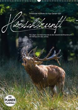 Emotionale Momente: Hirschbrunft (Wandkalender 2021 DIN A2 hoch) von Gerlach GDT,  Ingo