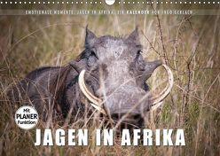 Emotionale Momente: Jagen in Afrika. (Wandkalender 2019 DIN A3 quer)