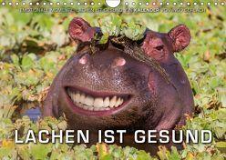 Emotionale Momente: Lachen ist gesund. (Wandkalender 2018 DIN A4 quer) von Gerlach,  Ingo