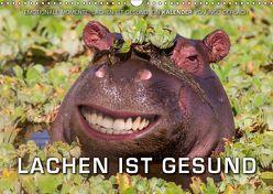 Emotionale Momente: Lachen ist gesund. (Wandkalender 2019 DIN A3 quer) von Gerlach,  Ingo