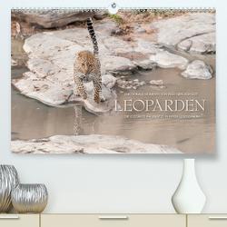 Emotionale Momente: Leoparden / CH-Version (Premium, hochwertiger DIN A2 Wandkalender 2020, Kunstdruck in Hochglanz) von Gerlach GDT,  Ingo