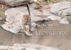 Emotionale Momente: Leoparden / CH-Version (Wandkalender 2019 DIN A3 quer) von Gerlach GDT,  Ingo