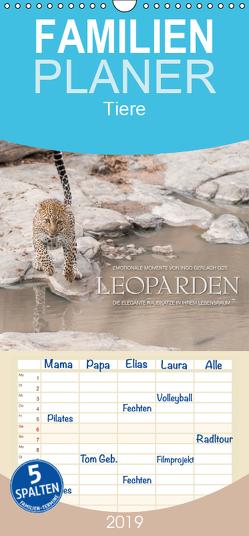 Emotionale Momente: Leoparden – Familienplaner hoch (Wandkalender 2019 , 21 cm x 45 cm, hoch) von Gerlach GDT,  Ingo