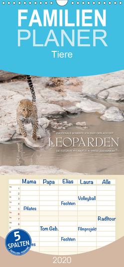 Emotionale Momente: Leoparden – Familienplaner hoch (Wandkalender 2020 , 21 cm x 45 cm, hoch) von Gerlach GDT,  Ingo