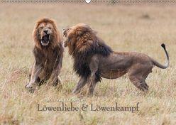 Emotionale Momente: Löwenkampf & Löwenliebe / CH-Version (Wandkalender 2019 DIN A2 quer) von Gerlach GDT,  Ingo