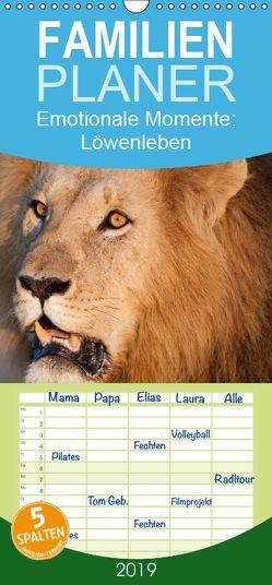 Emotionale Momente: Löwenleben – Familienplaner hoch (Wandkalender 2019 , 21 cm x 45 cm, hoch) von Gerlach GDT,  Ingo