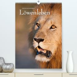 Emotionale Momente: Löwenleben (Premium, hochwertiger DIN A2 Wandkalender 2021, Kunstdruck in Hochglanz) von Gerlach GDT,  Ingo