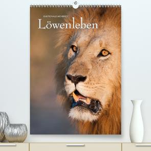 Emotionale Momente: Löwenleben (Premium, hochwertiger DIN A2 Wandkalender 2020, Kunstdruck in Hochglanz) von Gerlach GDT,  Ingo