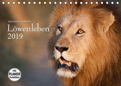 Emotionale Momente: Löwenleben (Tischkalender 2019 DIN A5 quer) von Gerlach GDT,  Ingo