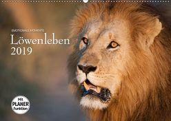 Emotionale Momente: Löwenleben (Wandkalender 2019 DIN A2 quer) von Gerlach GDT,  Ingo