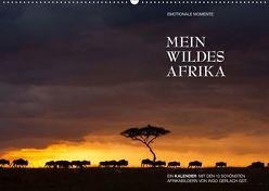Emotionale Momente: Mein wildes Afrika / CH-Version (Wandkalender 2019 DIN A2 quer) von Gerlach GDT,  Ingo