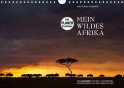 Emotionale Momente: Mein wildes Afrika (Wandkalender 2019 DIN A4 quer) von Gerlach GDT,  Ingo