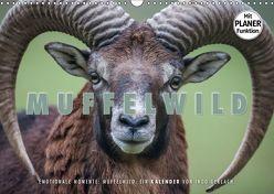 Emotionale Momente: Muffelwild. (Wandkalender 2019 DIN A3 quer) von Gerlach,  Ingo