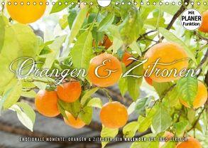 Emotionale Momente: Orangen und Zitronen. (Wandkalender 2018 DIN A4 quer) von Gerlach,  Ingo