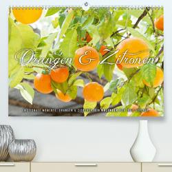 Emotionale Momente: Orangen & Zitronen. (Premium, hochwertiger DIN A2 Wandkalender 2021, Kunstdruck in Hochglanz) von Gerlach,  Ingo