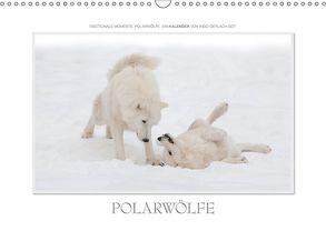 Emotionale Momente: Polarwölfe. / CH-Version (Wandkalender 2018 DIN A3 quer) von Gerlach GDT,  Ingo
