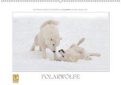Emotionale Momente: Polarwölfe. (Wandkalender 2019 DIN A2 quer) von Gerlach GDT,  Ingo